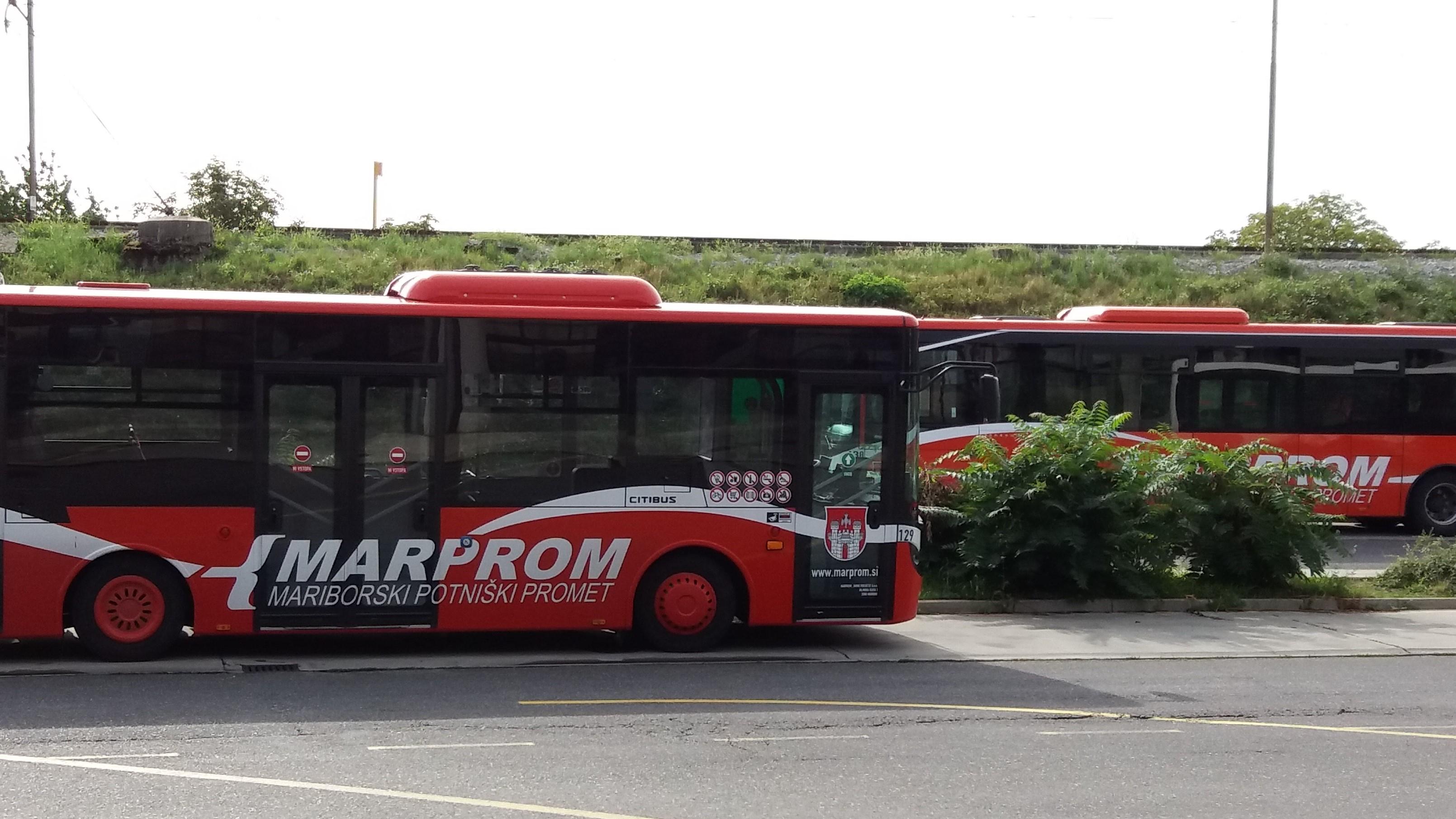 Brezplačni avtobusi